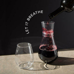 Wine Decanter Aerator Red Wine Glass Dinner BPA-Free Lightweight Filter Set NEW