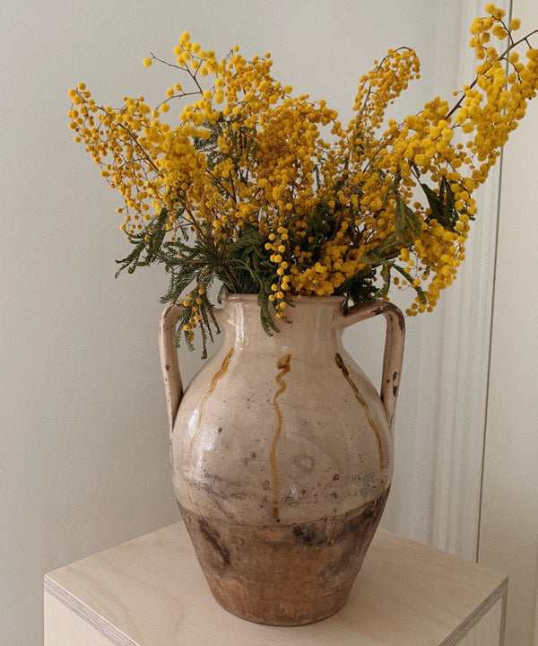 antique beige vase mimosa