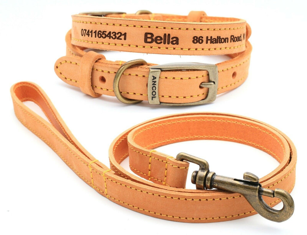 Personalised Finest Leather Dog Puppy Collar + optional Matching Lead