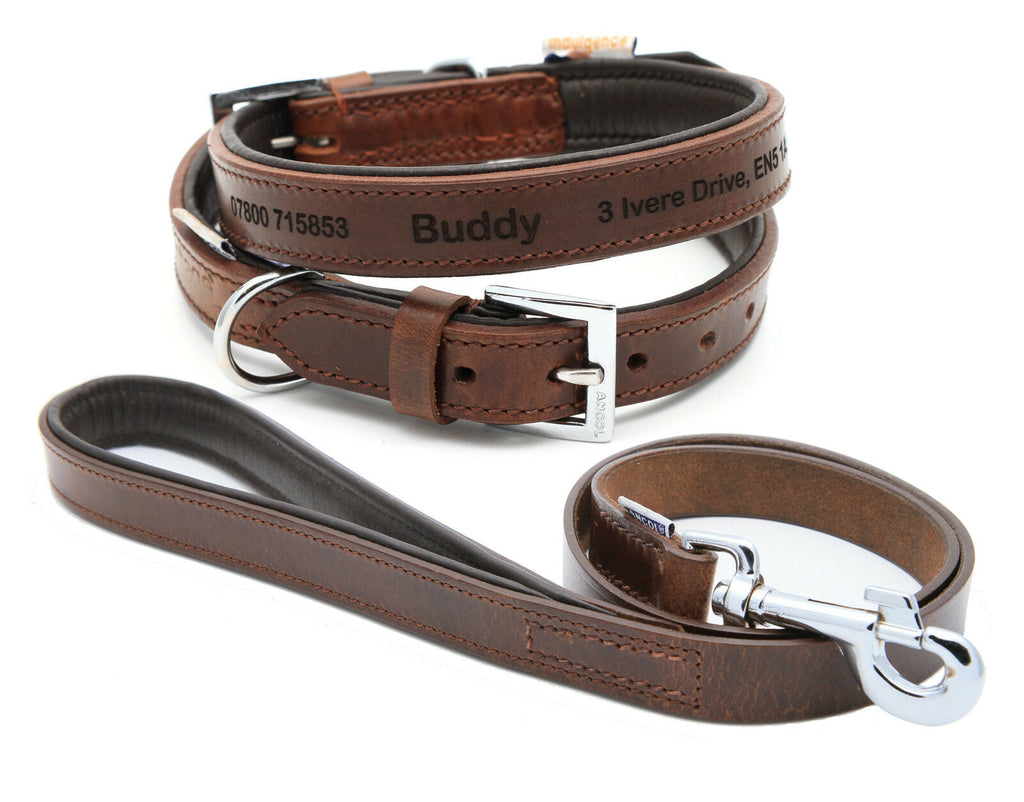 Personalised Premium Padded Leather Dog Collar + optional Matching Lead