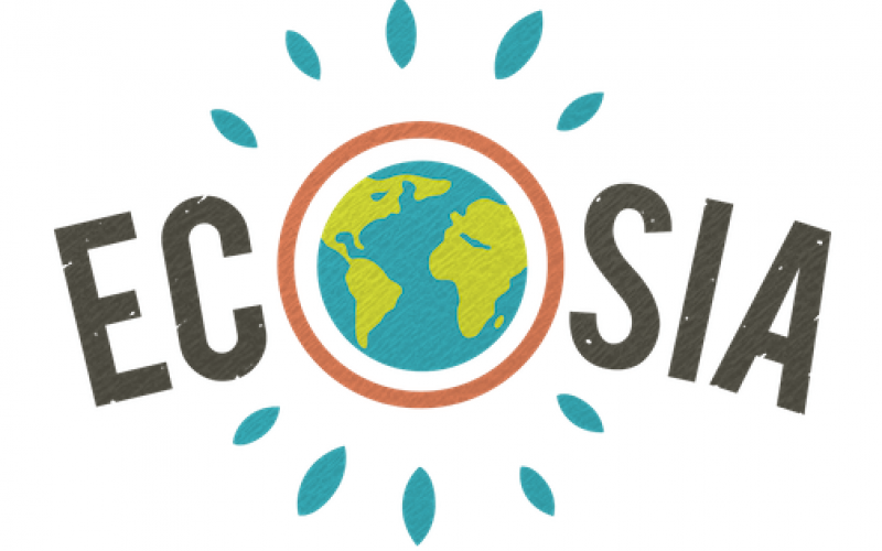Ecosia Tree Planting Search Engine for Eco Friendly Students