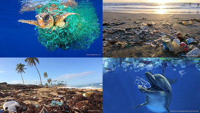 Plastic in the ocean - what does that have to do with me?