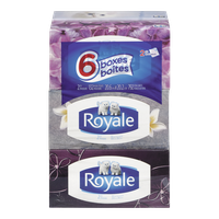 Royale Facial Tissues 2 Play (6 Pack)