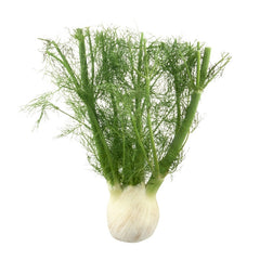 Anise Fennel (e.a)