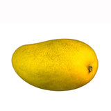Yellow Ataulfo Mangoes (e.a)