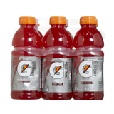 Gatorade Fruit Punch (6X591ml)