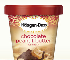 Haagen Dazs Ice Cream Chocolate Peanut Butter (500 ml)