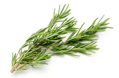 Rosemary (1 pack - approx. 40g)