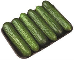 Mini Cucumbers (8 pack)