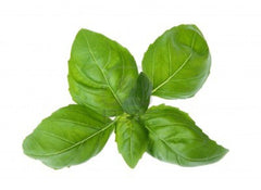 Basil (1 pack - approx. 40g)