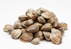 Little Neck Clams (100 g approx)  - Urbery