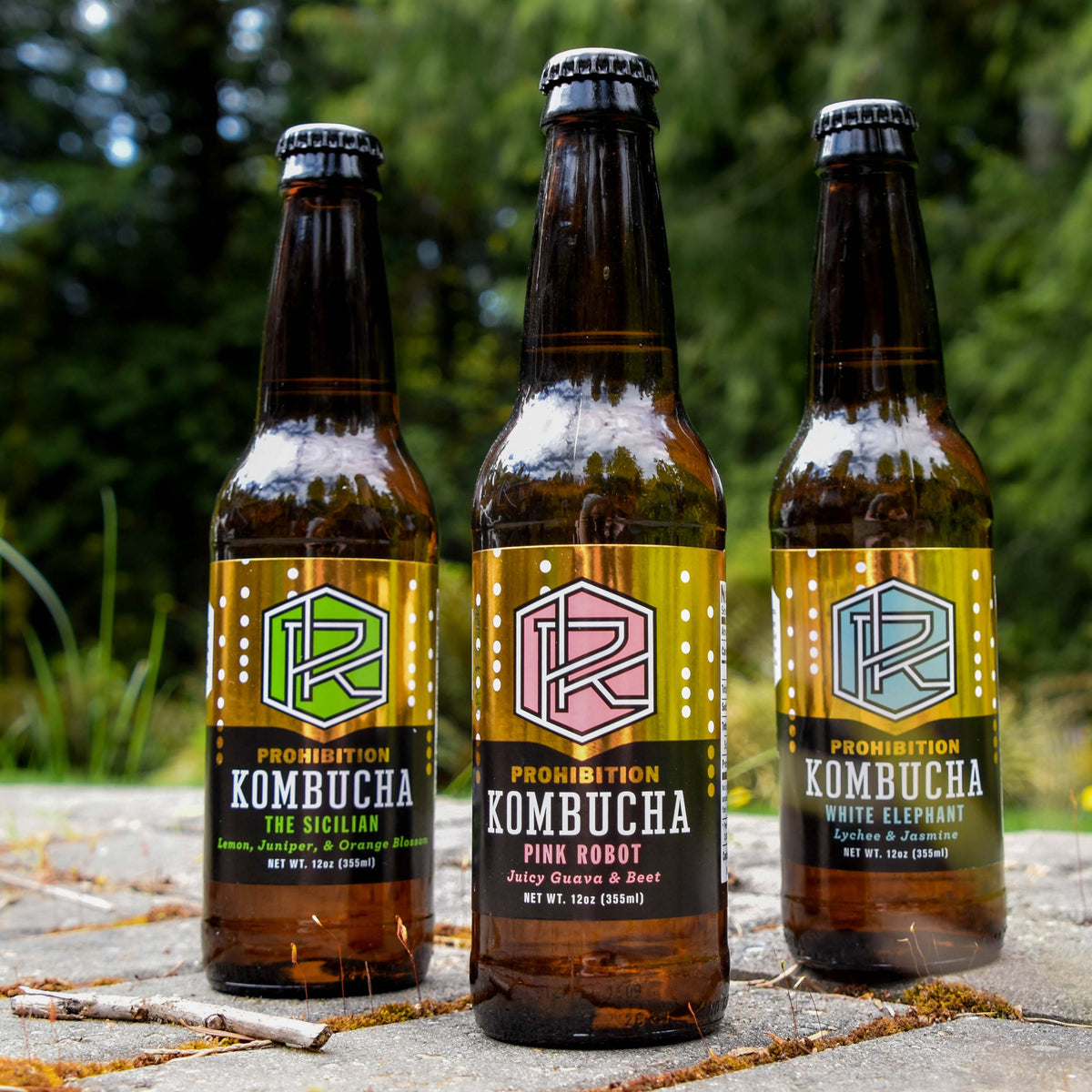 Prohibition Kombucha MIXED CASE - 12 pack