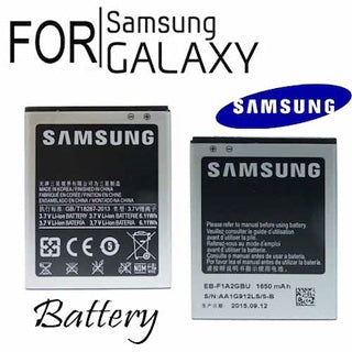 SAMSUNG  Battery/Extra Battery Kit/