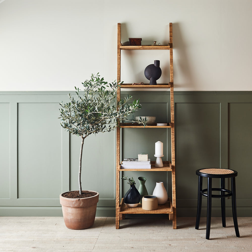 SHILOOPI LADDER SHELF