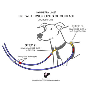 Symmetry Line: All-in-One Double-Ended Dog Leash 16 Feet 1/2 inch