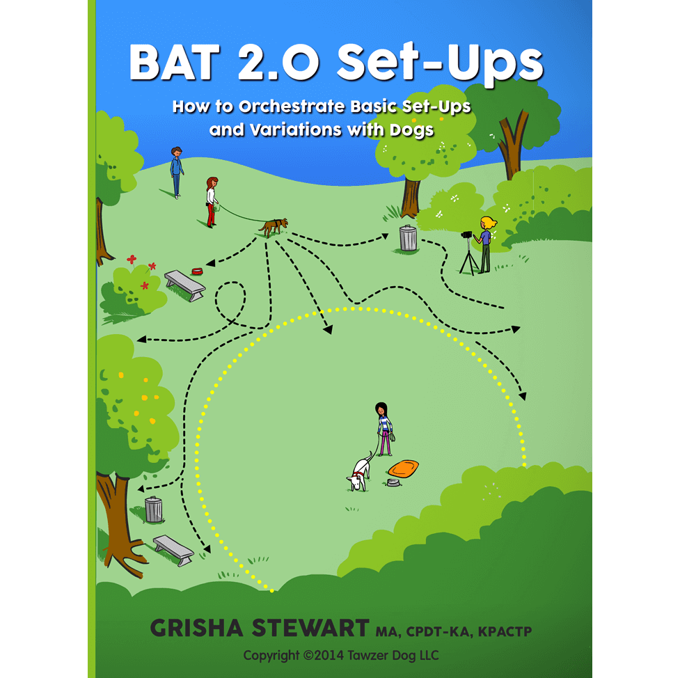 BAT Series 5 of 6: BAT 2.0 Set-Ups DVD