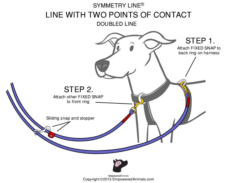 Symmetry Line: All in One Double-Ended Dog Leash 16 Feet 3/8 inch