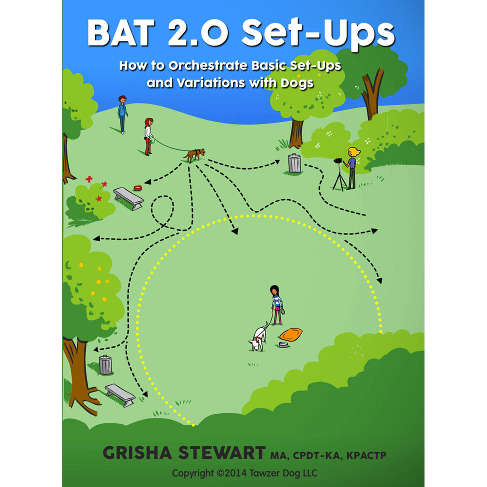 BAT Set-Ups for Dog Reactivity: BAT Empowerment Streaming Video 5
