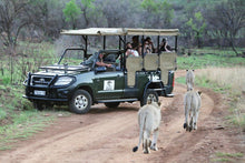 Load image into Gallery viewer, Pilansberg Getaway - Ivory Tree Lodge - cheap experiences in South Africa Cheap Holidays