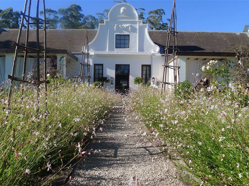 Gourmet Getaway to Plettenberg Bay - Lairds Lodge - Instant Experiences