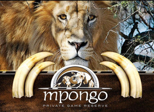 Enjoy East London - Premier Resort Mpongo - cheap experiences in South Africa Cheap Holidays