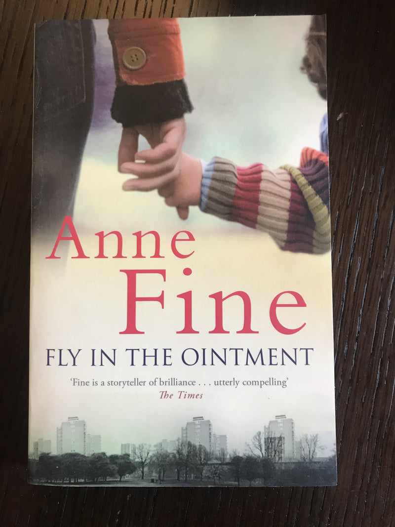Fly In The Ointment by Anne Fine