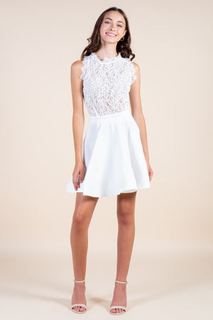 Aislynn Embroidered Lace Bodice A-Line Dress