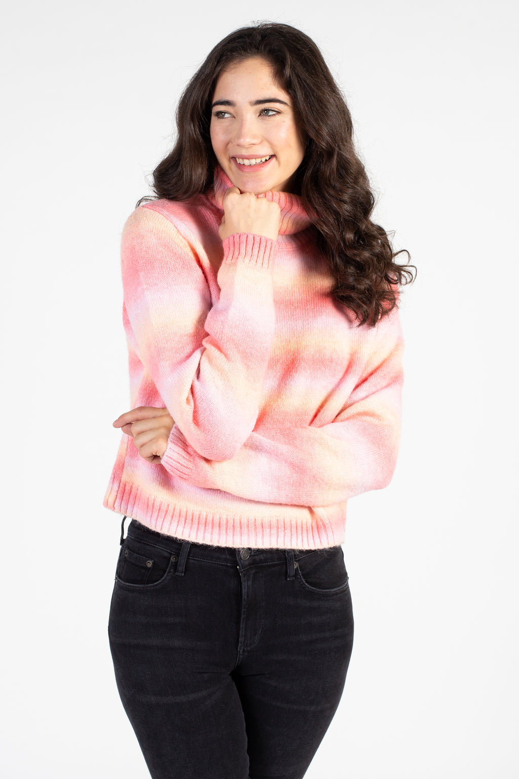 Multi Stripe Knit Turtleneck Sweater