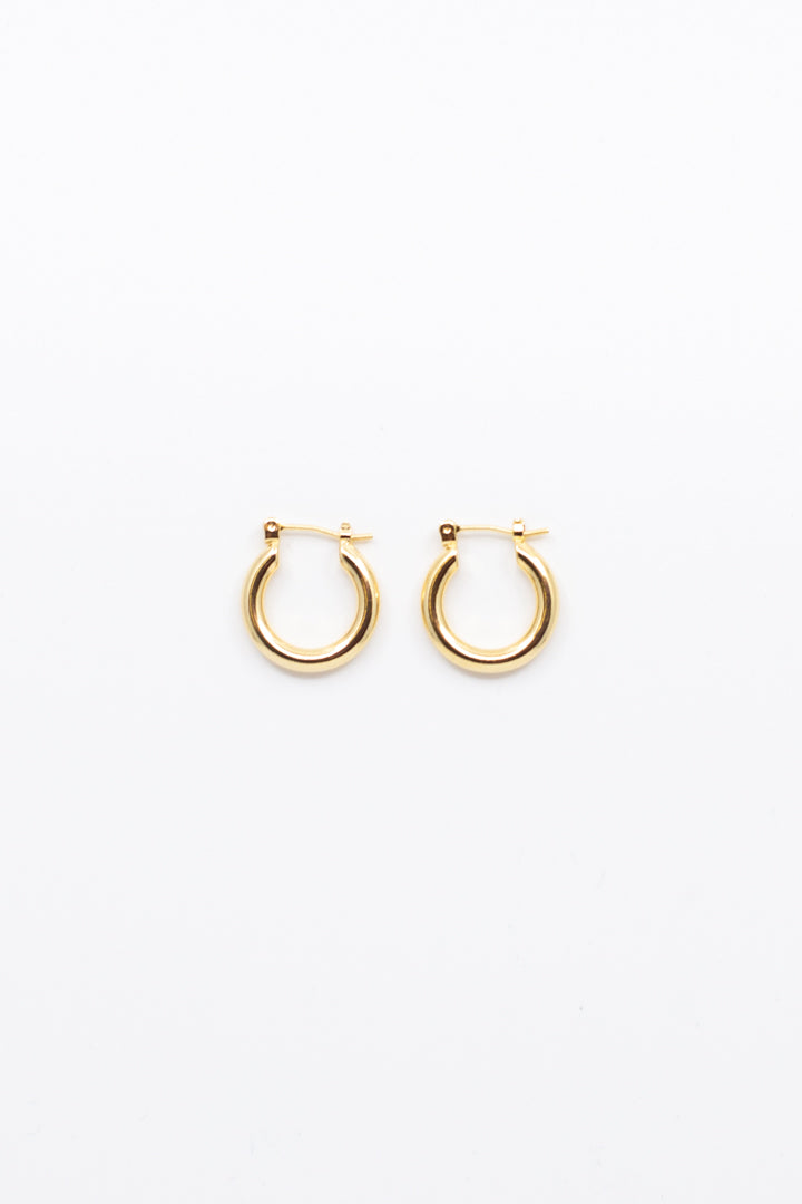 Small Gold Hoop Earrings - honey