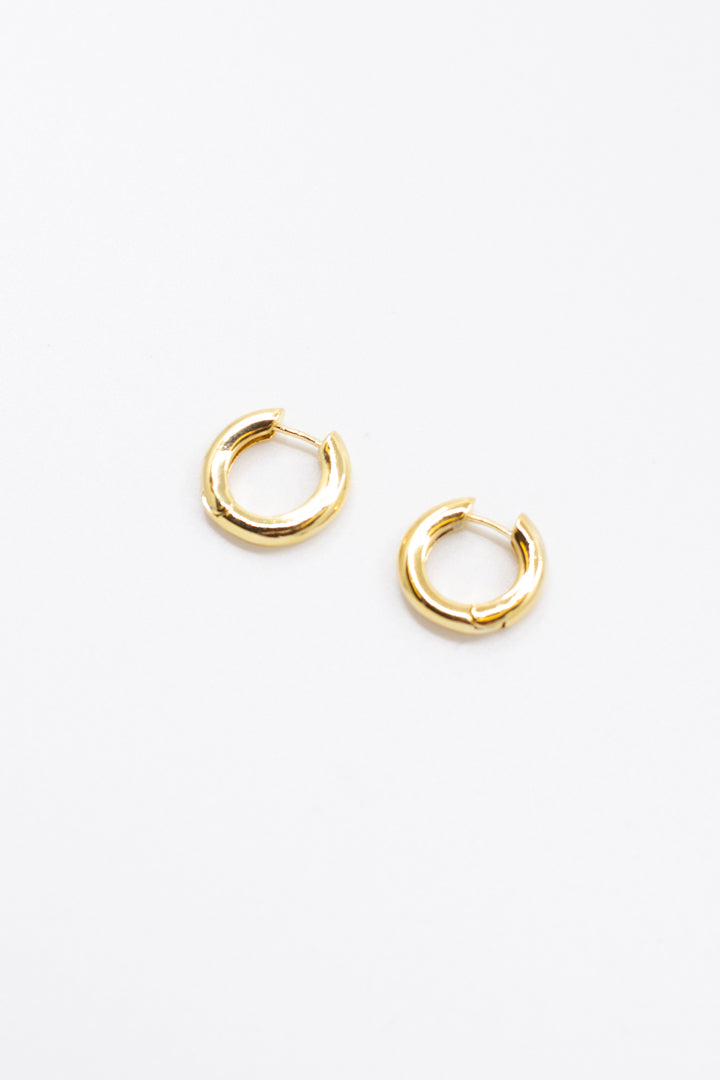 Mini Gold Hoop Earrings - honey
