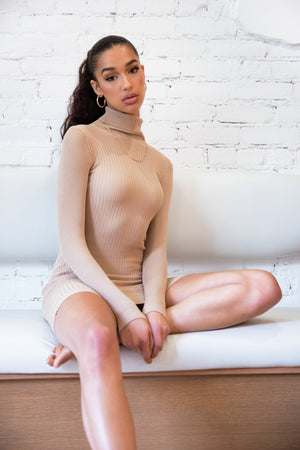 Blaire Ribbed Turtleneck Dress