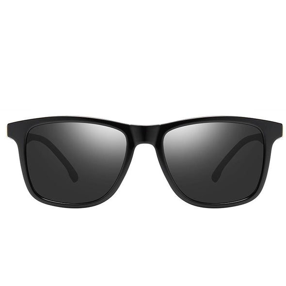 sunglasses FE959