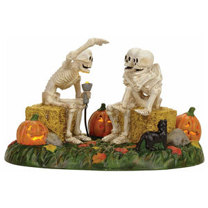 Scary Skeleton Stories From Dept 56 Halloween Snow Village