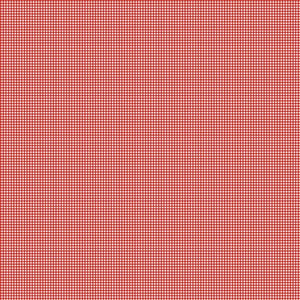 Love Letter Red Gingham quilt fabric by Lindsay Wilkes for Riley Blake Desings