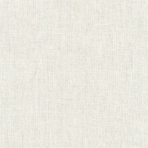 Essex Yarn Dyed Homespun Linen-Cotton Silver