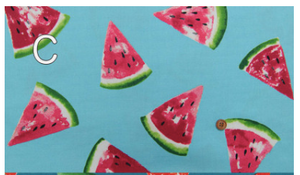 Oxford Cloth - Watermelon