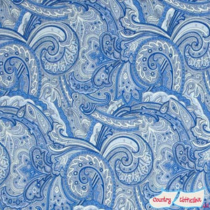 Avignon Paisley Blue fabric by Benartex