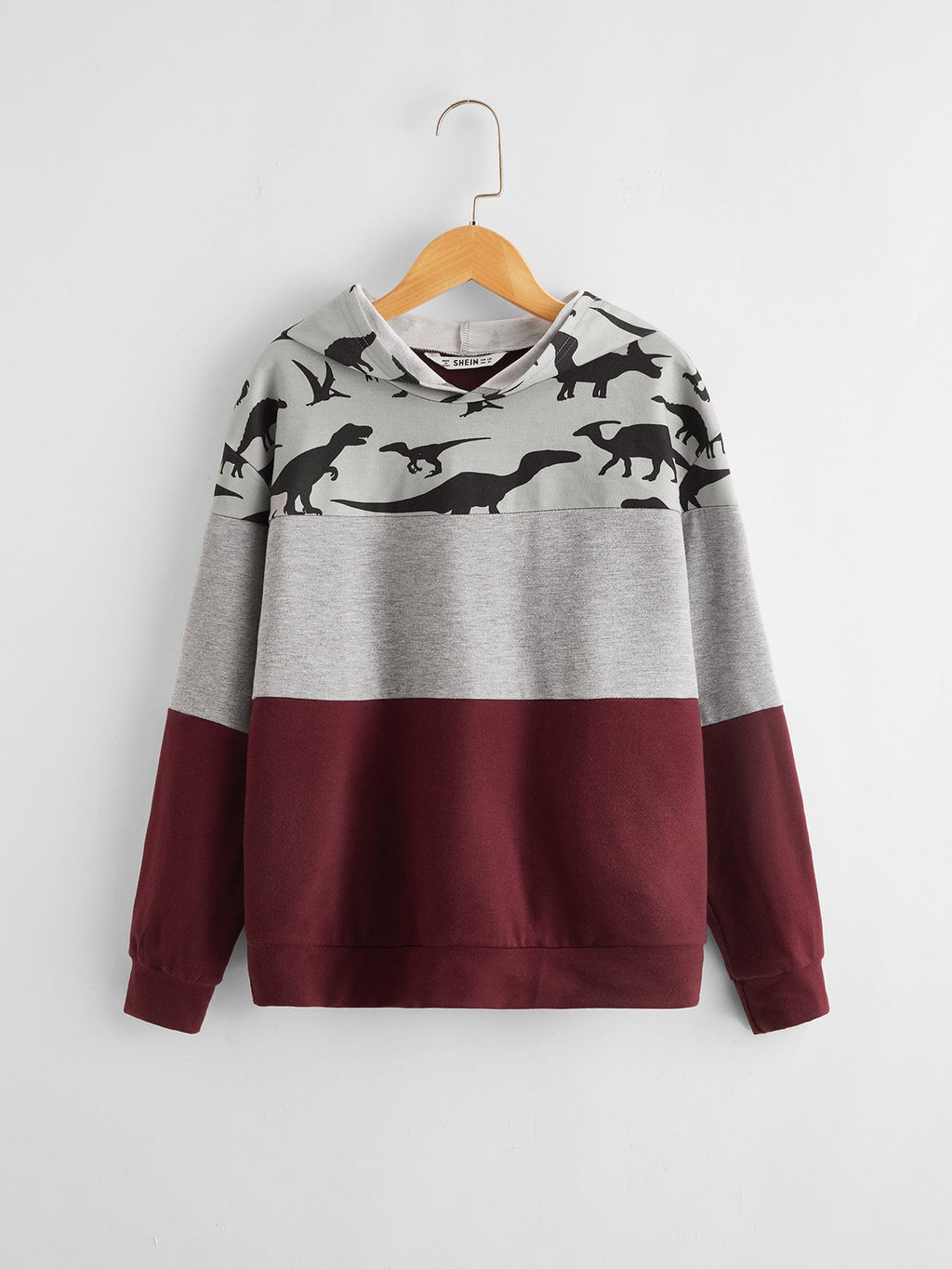 Boys Drop Shoulder Dinosaur Print Colorblock Hoodie