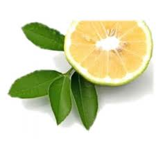 Bergamot (Natural Blend) Essential Oil