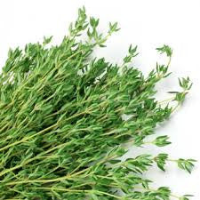 Thyme White Essential Oil