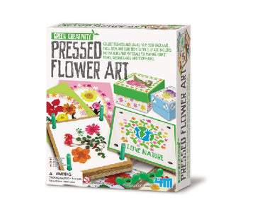 4M Craft Pressed Flower Art - Toyworld