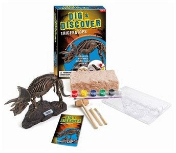 DIG AND DISCOVER DINOSAURS ASSORTED STYLES