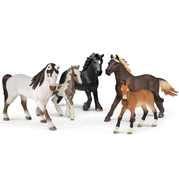 Schleich 5 Horses Collectors Pack - Toyworld