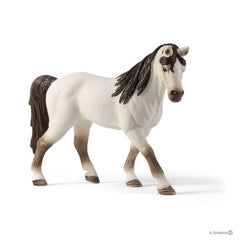 SCHLEICH 5 HORSES COLLECTORS PACK