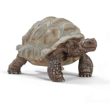 Schleich Giant Tortoise Red Dot - Toyworld