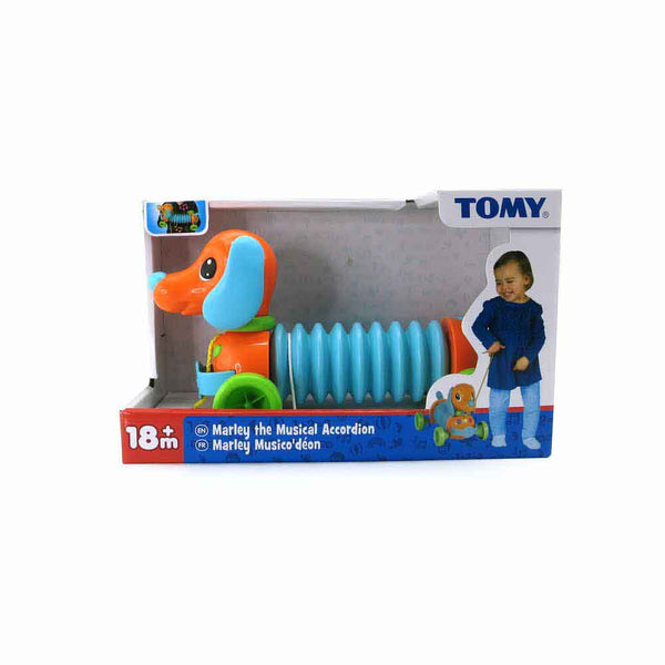 TOMY MARLEY THE MUSICAL ACCORDIAN