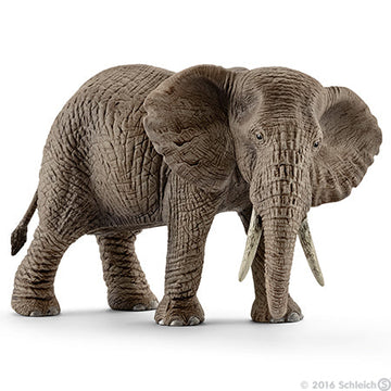 Schleich African Elephant Female 1 - Toyworld