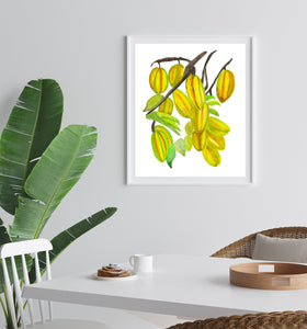 Tropical Fruits Art Print Bundle Set of 4 Prints