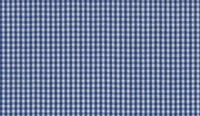 Load image into Gallery viewer, Blue Small Gingham