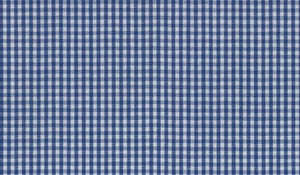 Blue Small Gingham